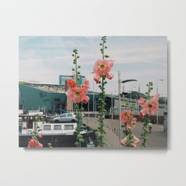 Flowers in Amsterdam Metal Print