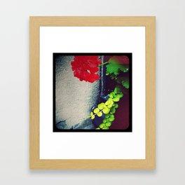 Geranium Flow Framed Art Print