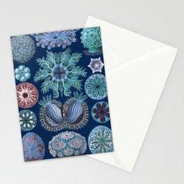 Ernst Haeckel Ascidiae Sea Squirts Stationery Cards