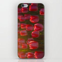 Tulips spring iPhone Skin