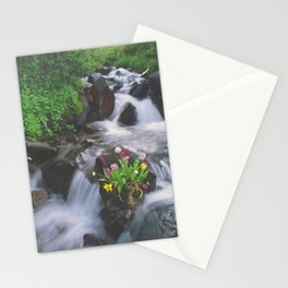 Wildflowers in the Stream above Montezuma, Colorado Stationery Cards