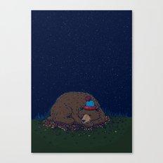 Starry Night Novembear Canvas Print