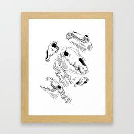 Horse skulls Framed Art Print