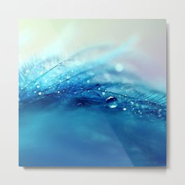 blue feather Metal Print