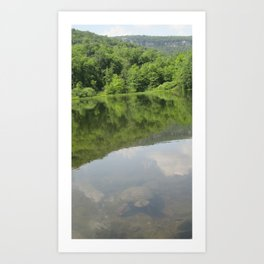 Snapping Turtle (TWO) Art Print
