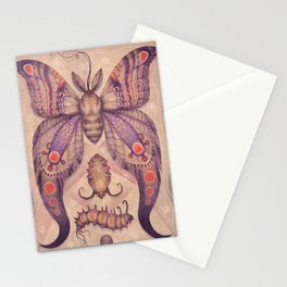Entomology Tab. VI Stationery Cards