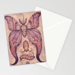 Entomology Tab. VI Stationery Cards