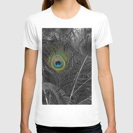 Peacock Peek T-shirt