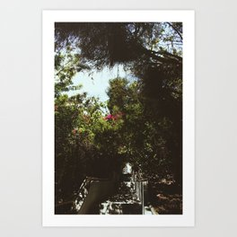 1,000 Steps, Laguna Beach  Art Print