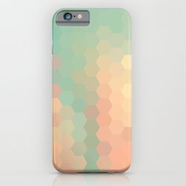 PEACH AND MINT HONEY iPhone Case
