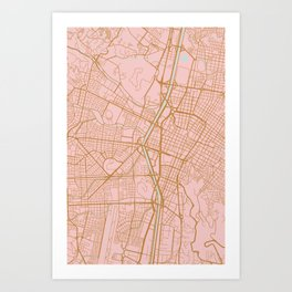 Pink and gold Medellin map, Colombia Art Print