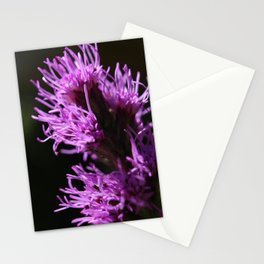 Bright Purple Liatris Flower Abstract Stationery Cards