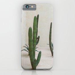 Cabo Cactus VI iPhone Case