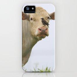 Cow Bird iPhone Case
