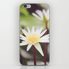 Water Lilies iPhone & iPod Skin