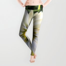 In Memory Leggings