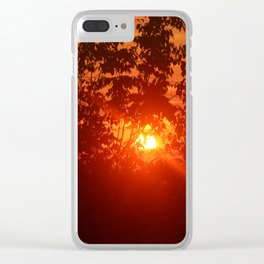 Sunset Trees Clear iPhone Case