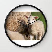 lamb Wall Clocks featuring lamb by Marcel Derweduwen
