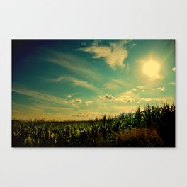 At the Edge Canvas Print