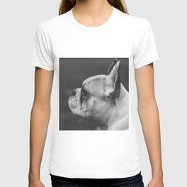 Wistful monochrome Frenchie T-shirt