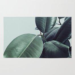 Ficus Elastica #20 #LightGreen #foliage #decor #art #society6 Rug