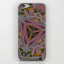 Red Velvet Pie iPhone Skin