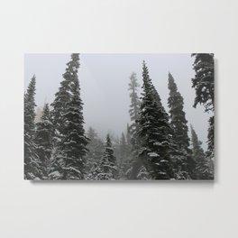 Winter's Edge Metal Print