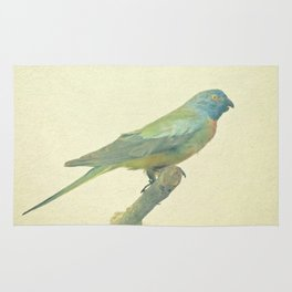 Bird Study #3 Rug