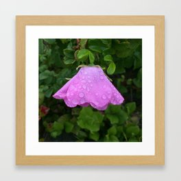 Rainy Day Flower Framed Art Print