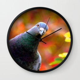 Cute Curious Pigeon Wall Clock