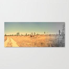 Sandhills Landscape Panoramic Canvas Print