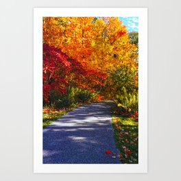 Paved Autumn Path Art Print