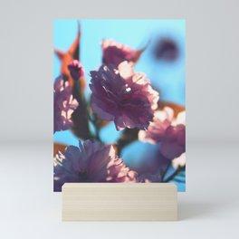 Sakura Nine - Pink Cherry Blossoms Mini Art Print