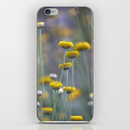 Spring time. Happy Valley iPhone Skin