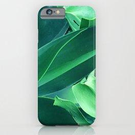 Fine Art Melange of Lush Leaves Photo iPhone Case