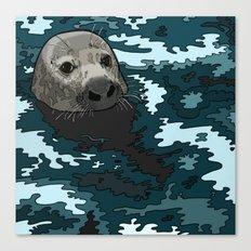 Grey Seal Canvas Print