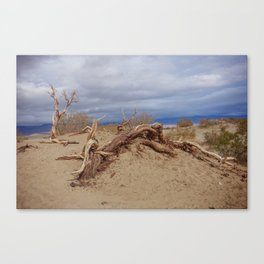 Death Valley II Canvas Print