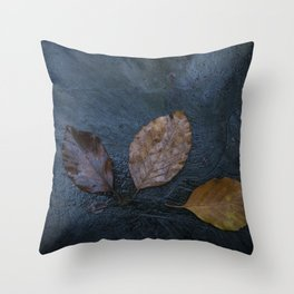 Leaves by Brian Vegas Throw Pillow