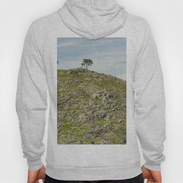 Trees on the hill Hoody