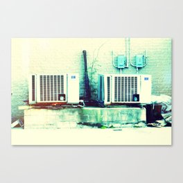 What's cooler than cool? Ice Cold! Canvas Print