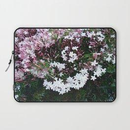 Beautiful Jasmine Flowers In Full Bloom  Laptop Sleeve