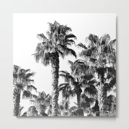 {2 of 2} Classic Palm Leaf Sky // Summer Black and White Palmtree Art Print Metal Print