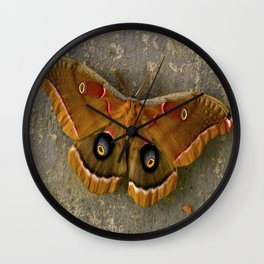 The Art of Nature Wall Clock