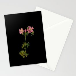 Malva Maschata Mary Delany Delicate Paper Flower Collage Black Background Floral Botanical Stationery Cards