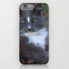 Addie Slim Case iPhone 6s
