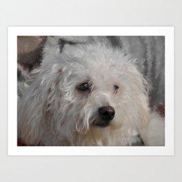White Puppy Art Print