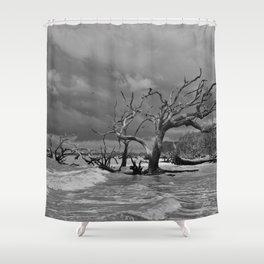 Driftwood Beach 2 Shower Curtain