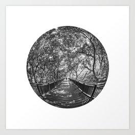 Circular Fisheye #6 Art Print