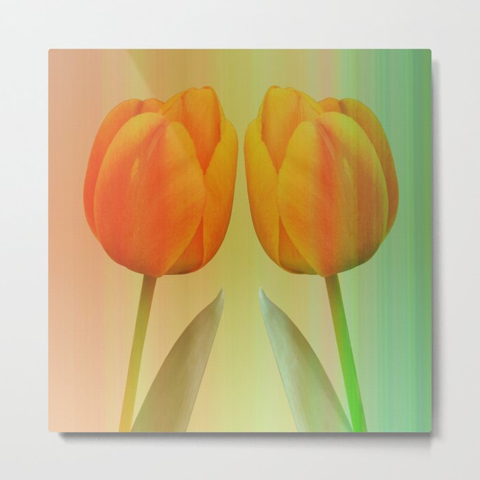 Head-to-Head, mixed media art with elegant Tulips Metal Print