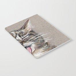Cat *Lil Bub* Notebook
